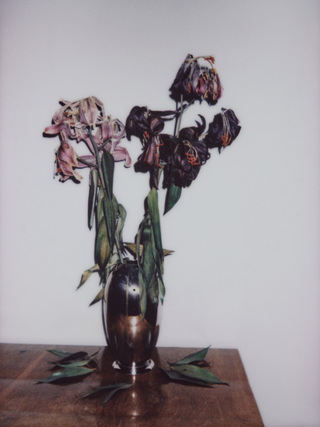 Broken Flowers, No.9, 135x100cm, 2018