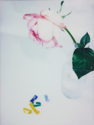 Broken Flowers, No.21, 135x100cm, 2019